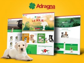 adragna-website-fdbk-news